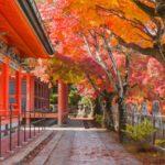 しまなみ海道の紅葉スポットはどこ?しまなみ海道の紅葉を捜しに行ってきた(その1)