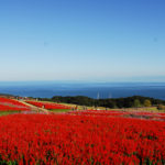 淡路 景観 園芸 学校 は無料で楽しめる淡路島のおすすめスポット