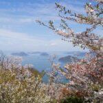 紫雲出山 2021年の桜シーズンは予約制に。自転車での予約はできない!?スタッフに聞いてみた。